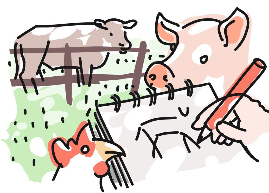 Tiere-zeichnen-Wulksfelde-2019-promo