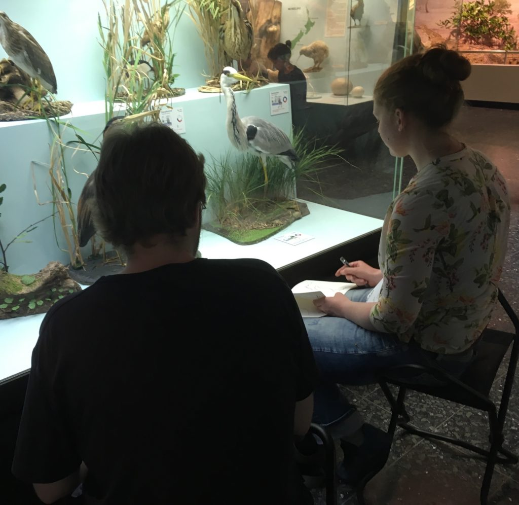 Zoologisches-Museum-Hamburg-Zeichenworkshop-2019-26