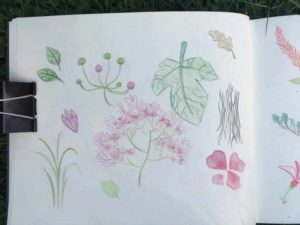 Rapport-Workshop-Planten-un-Blomen-2020-2
